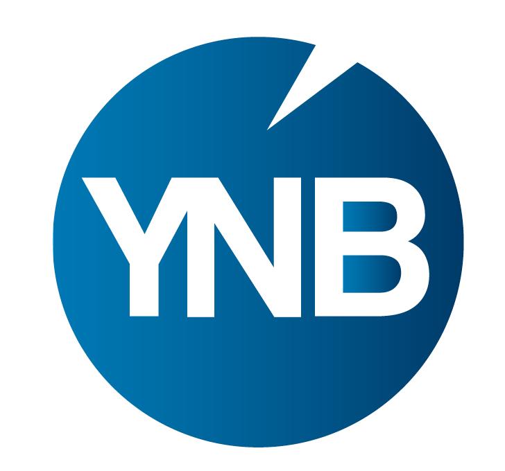 YNB Consulting Ltd